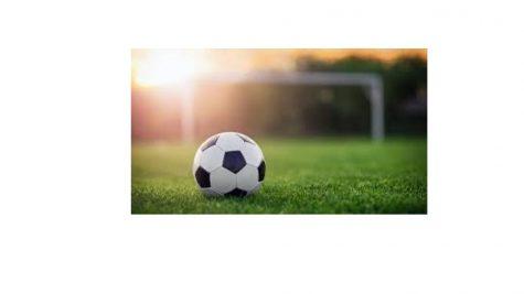 Girls Soccer in the Fall?